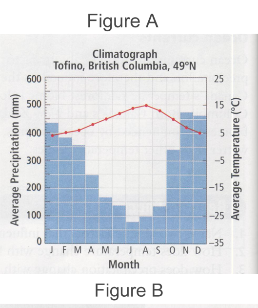 is average annual precipitation an example of weather or climate
