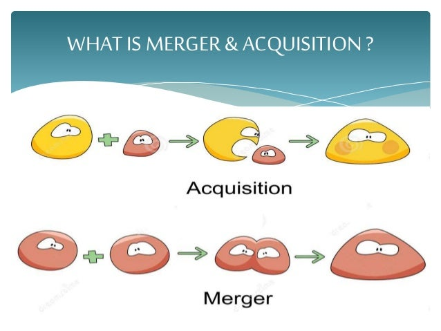what is merger with example