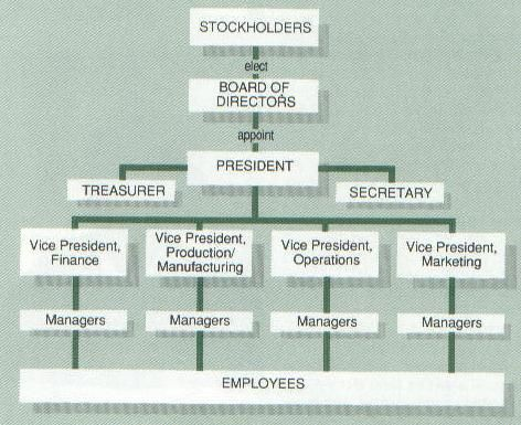 example of profit business organization in the philippines
