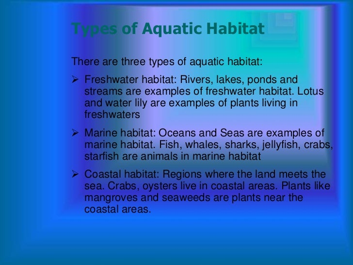 example of aquatic in australia